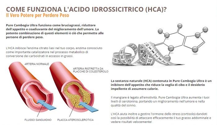 come-funziona-acido-idrossicitrico
