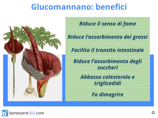 glucomannano prprietà